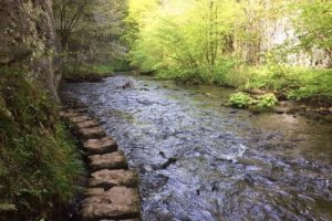 The Stepping Stones at Chee Dale